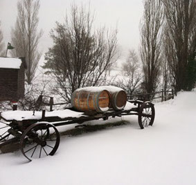 winery-julian-snow